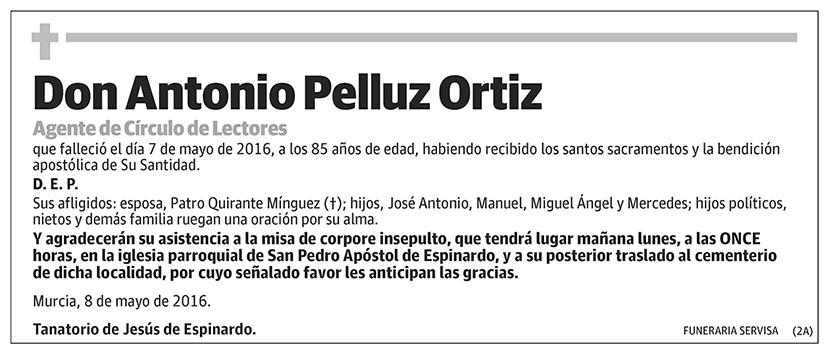 Antonio Pelluz Ortiz