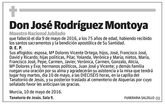 José Rodríguez Montoya