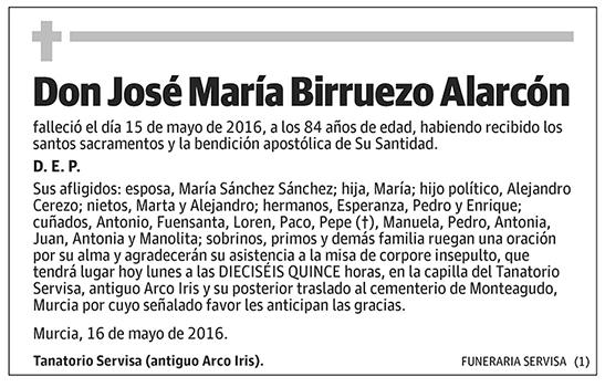 José María Birruezo Alarcón