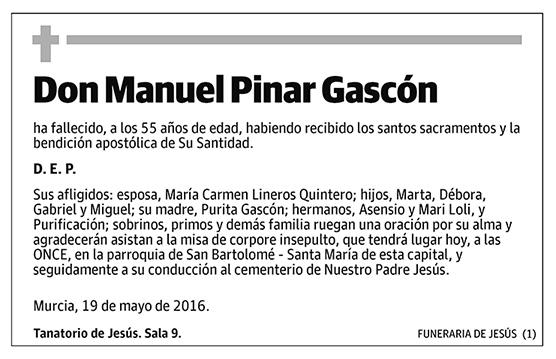 Manuel Pinar Gascón