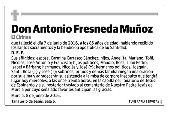 Antonio Fresneda Muñoz