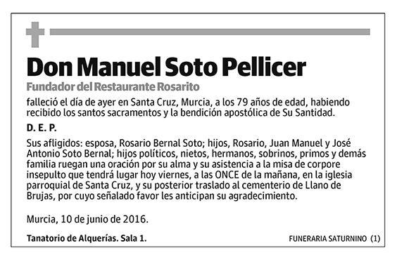 Manuel Soto Pellicer