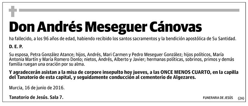 Andrés Mesenguer Cánovas