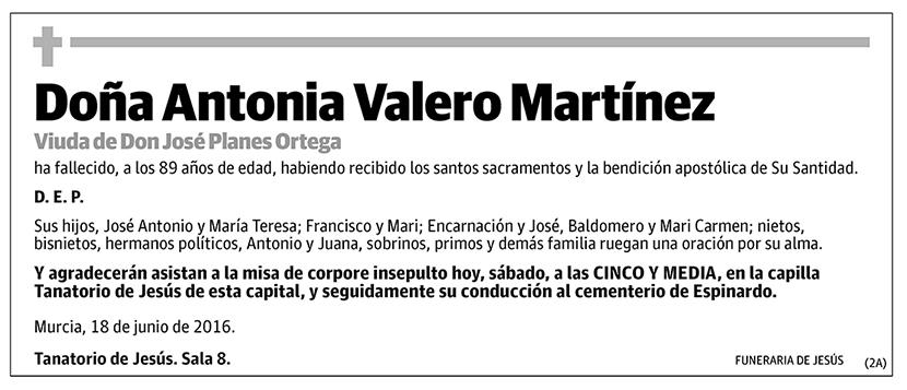 Antonia Valero Martínez
