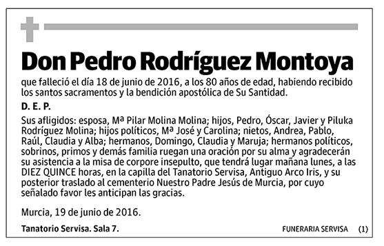 Pedro Rodríguez Montoya