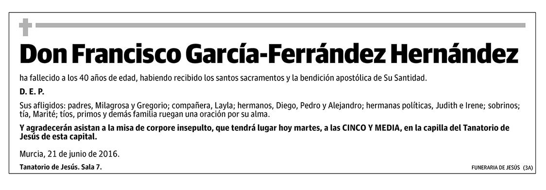 Francisco García-Fernández Hernández