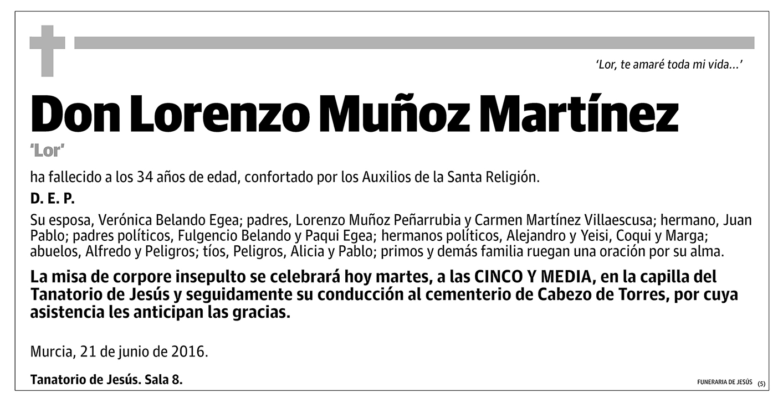 Lorenzo Muñoz Martínez