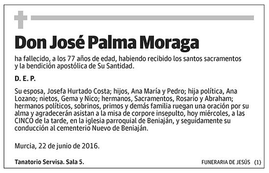 José Palma Moraga