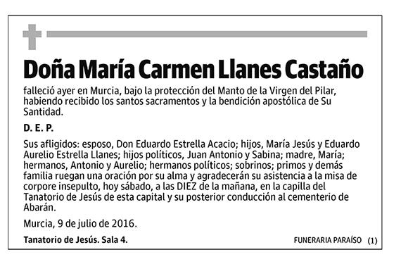 María Carmen Llanes Castaño