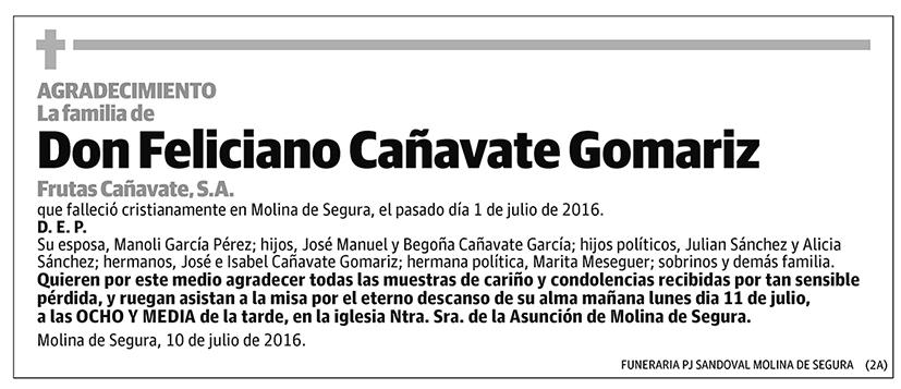 Feliciano Cañavate Gomariz