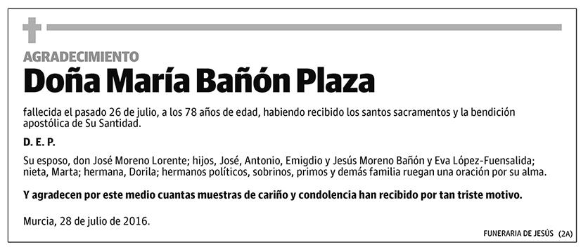 María Bañón Plaza
