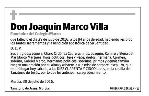 Joaquín Marco Villa