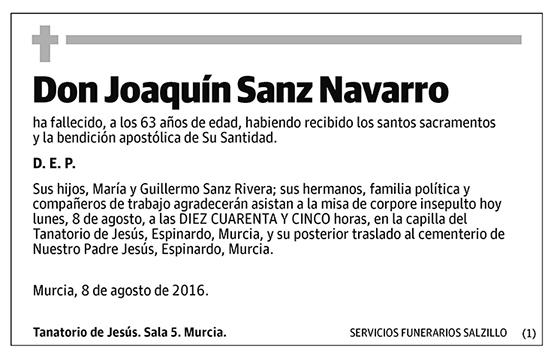 Joaquín Sanz Navarro
