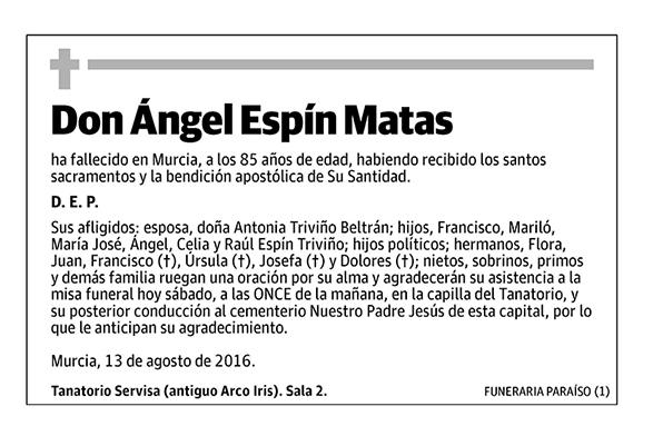 Ángel Espín Matas