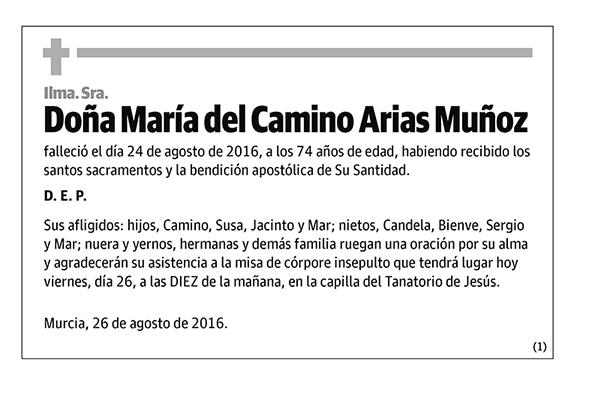 María del Camino Arias Muñoz