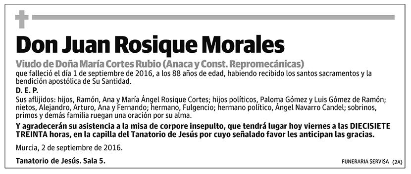 Juan Rosique Morales