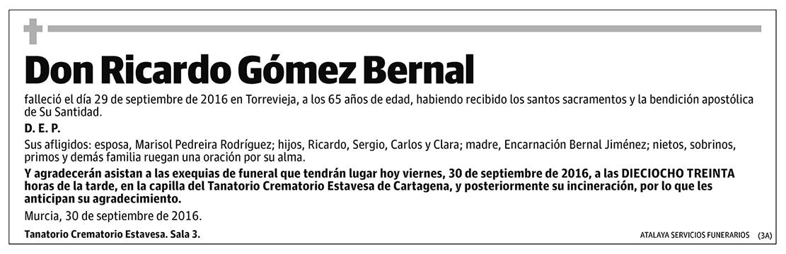Ricardo Gómez Bernal
