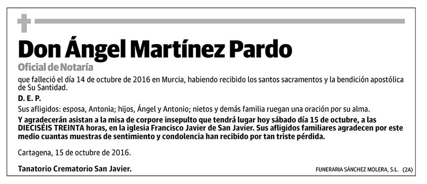 Ángel Martínez Pardo