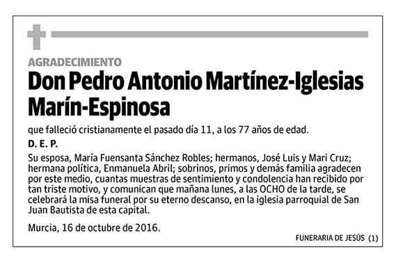Pedro Antonio Martínez-Iglesias Marín-Espinosa