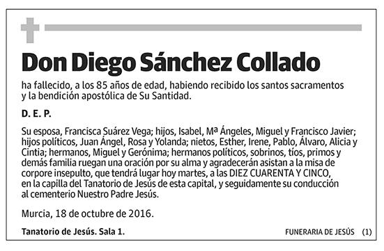 Diego Sánchez Collado