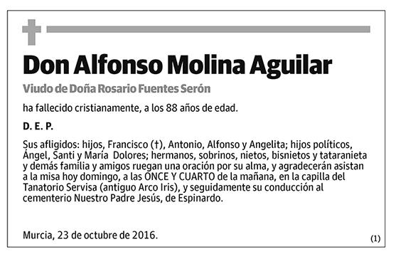 Alfonso Molina Aguilar