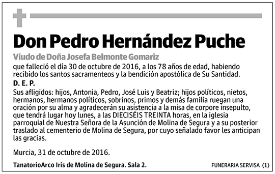 Pedro Hernández Puche
