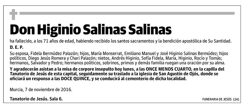 Higinio Salinas Salinas