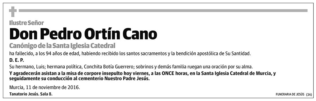 Pedro Ortín Cano