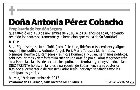 Antonia Pérez Cobacho