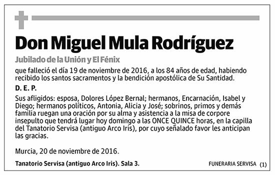 Miguel Mula Rodríguez