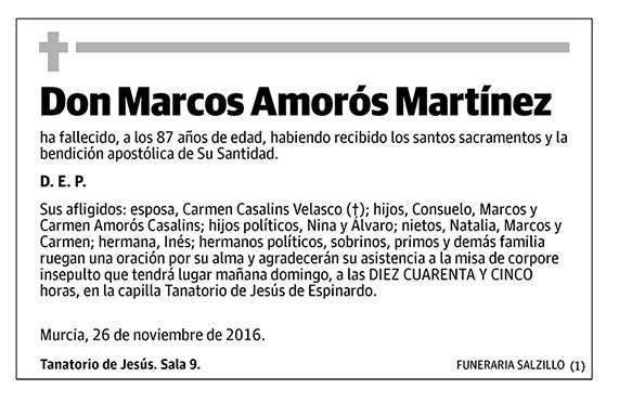Marcos Amorós Martínez