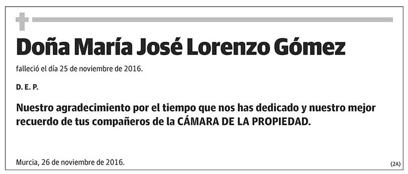 María José Lorenzo Gómez