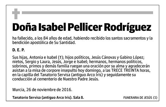 Isabel Pellicer Rodríguez