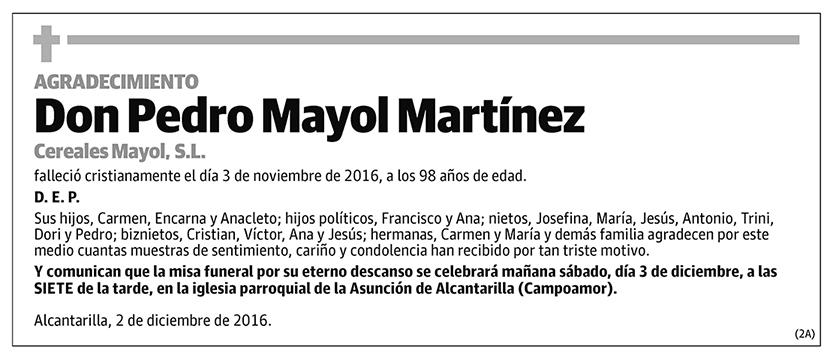 Pedro Mayol Martínez