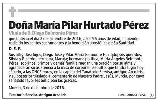 María Pilar Hurtado Pérez