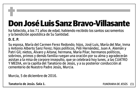 José Luis Sanz Bravo-Villasante