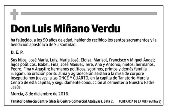 Luis Miñano Verdu