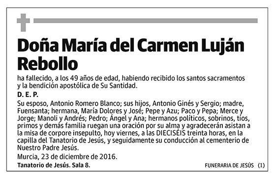 María del Carmen Luján Rebollo