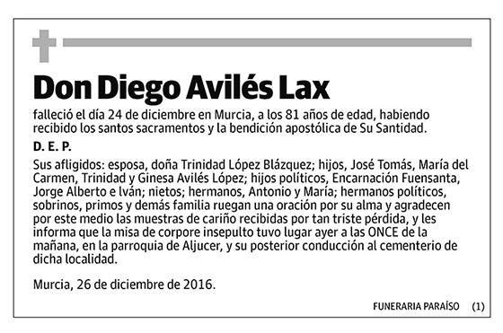 Diego Avilés Lax