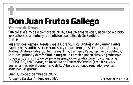 Juan Frutos Gallego