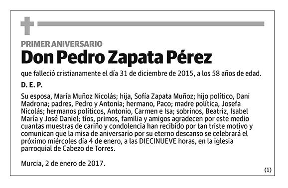 Pedro Zapata Pérez