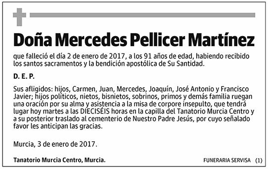 Mercedes Pellicer Martínez