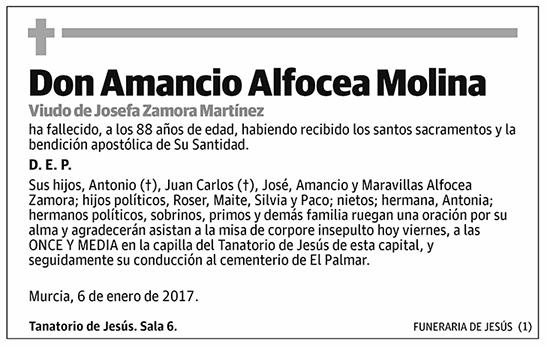 Amancio Alfocea Molina