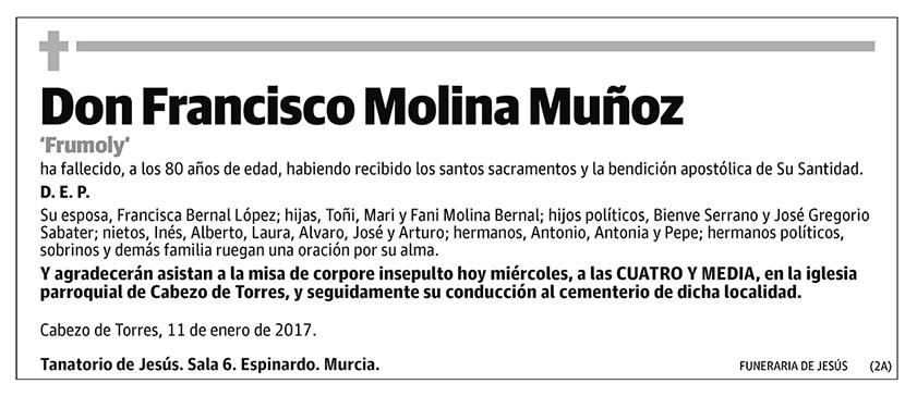 Francisco Molina Muñoz