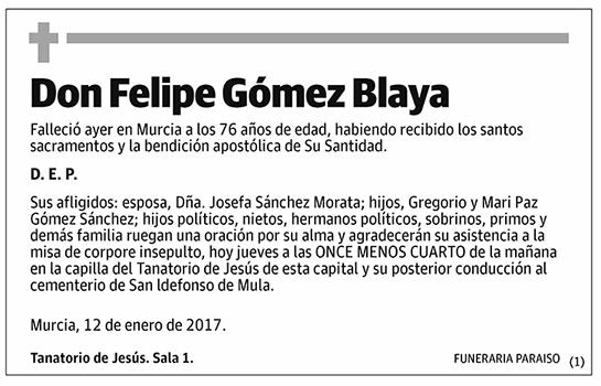 Felipe Gómez Blaya