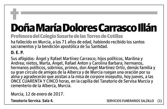 María Dolores Carrasco Illán