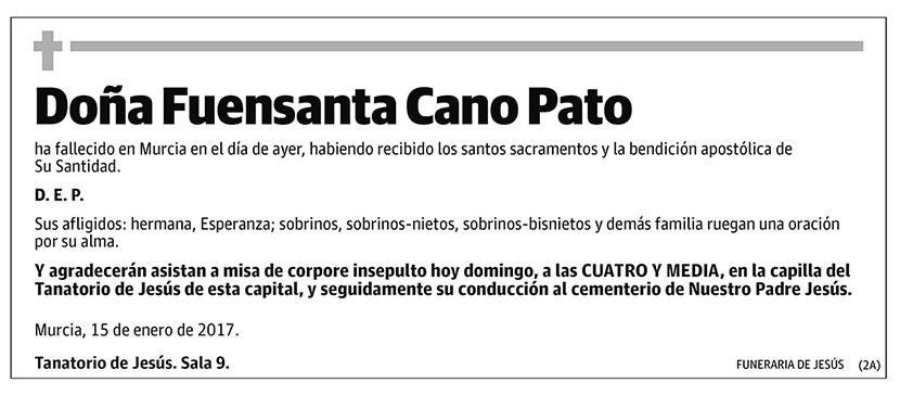 Fuensanta Cano Pato