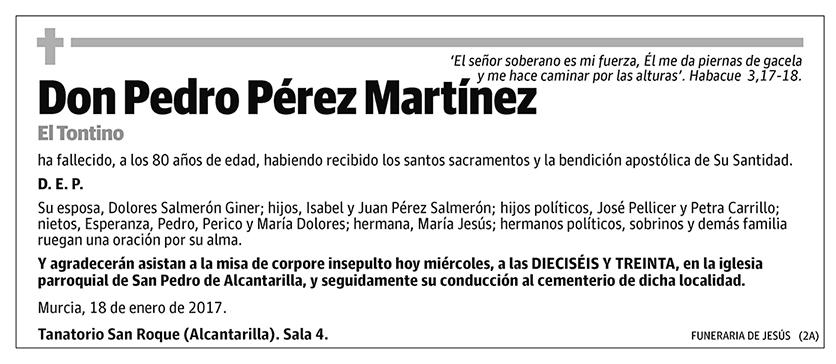 Pedro Pérez Martínez