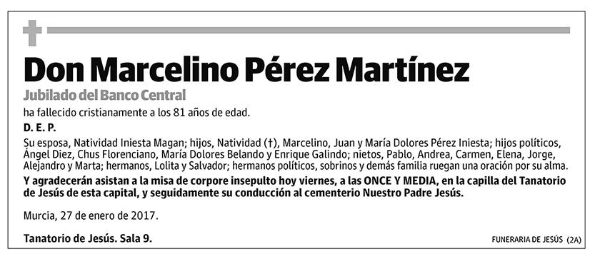 Marcelino Pérez Martínez