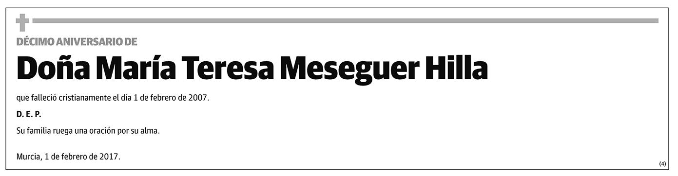 María Teresa Meseguer Hilla